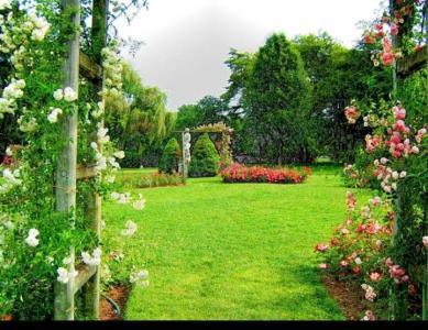 Garden Area Image of 828 Sq.ft 2 BHK Apartment for buy in Om Vasant Vatika, Kalyan East for 4275000