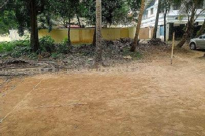 Gallery Cover Image of  Sq.ft Residential Plot for buy in Ayyanthole for 1450000