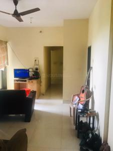 Gallery Cover Image of 750 Sq.ft 1 BHK Apartment for rent in Vashi for 26000