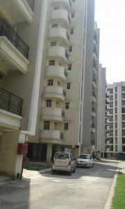 Gallery Cover Image of 1125 Sq.ft 2 BHK Apartment for rent in Parsvnath Regalia, Raj Bagh for 10000