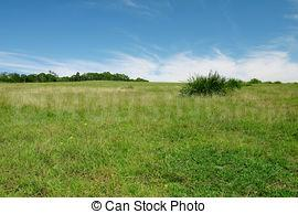 11000 Sq.ft Residential Plot for Sale in Bhiwandi, Thane