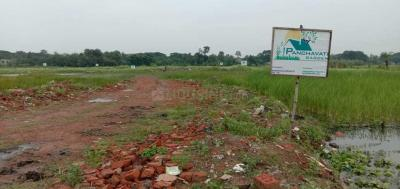 Gallery Cover Image of  Sq.ft Residential Plot for buy in New Town for 3000000