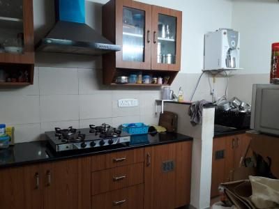 Gallery Cover Image of 1150 Sq.ft 2 BHK Apartment for rent in Velachery for 20000
