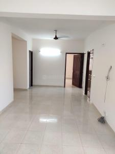 Gallery Cover Image of 1200 Sq.ft 3 BHK Apartment for rent in Tulip White, Sector 69 for 21000