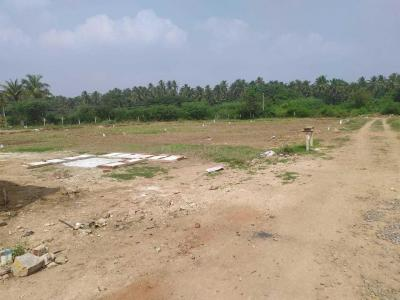 Gallery Cover Image of  Sq.ft Residential Plot for buy in Saravanampatty for 210000