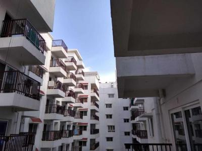 Gallery Cover Image of 1626 Sq.ft 3 BHK Apartment for rent in Whitefield for 35000
