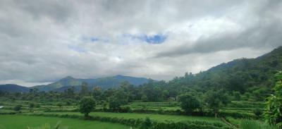 6804 Sq.ft Residential Plot for Sale in Ramnagar, Nainital