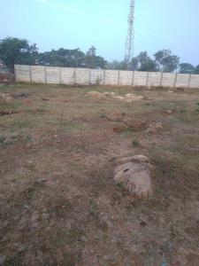 1950 Sq.ft Residential Plot for Sale in Hakimpet, Hyderabad