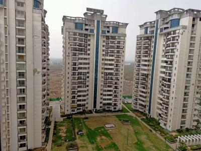 Gallery Cover Image of 2000 Sq.ft 3 BHK Apartment for rent in Omaxe Hills 2, Sector 41 for 30000