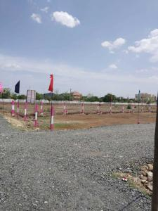 Gallery Cover Image of  Sq.ft Residential Plot for buy in Selaiyur for 2490000