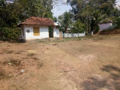 Gallery Cover Image of  Sq.ft Residential Plot for buy in Thrippunithura for 5000000