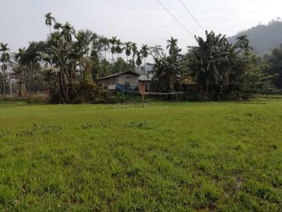 14400 Sq.ft Residential Plot for Sale in Tetelia, Guwahati