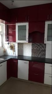 Gallery Cover Image of 955 Sq.ft 2 BHK Apartment for rent in Noida Extension for 8500