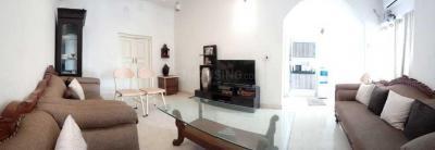 Living Room Image of Nirvana Girls PG in Sector 19