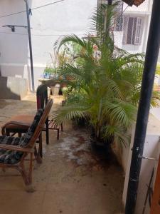 Balcony Image of PG 7382092 Shanti Nagar in Shanti Nagar
