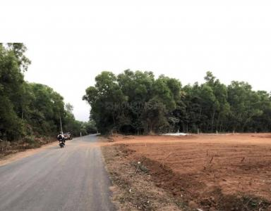 4000 Sq.ft Residential Plot for Sale in Kapu, Payynur