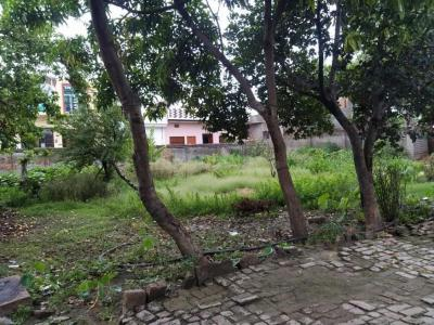 Gallery Cover Image of 855 Sq.ft 1 BHK Independent Floor for buy in Pilkhuwa for 25000000