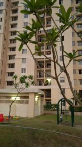 Gallery Cover Image of 1950 Sq.ft 3 BHK Apartment for rent in Supreme Tower, Sector 99 for 18000