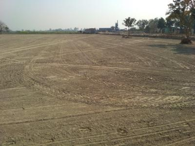 13950 Sq.ft Residential Plot for Sale in Sector 132, Noida
