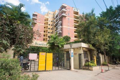 Living Room Image of PG 4642105 Marathahalli in Marathahalli