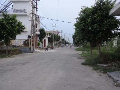 6000 Sq.ft Residential Plot for Sale in SHAMLI, Muzaffarnagar