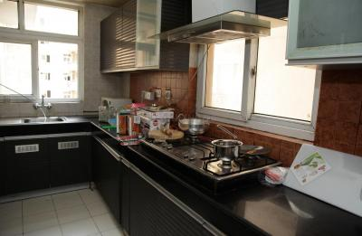 Kitchen Image of PG 4642701 Sector 49 in Sector 49