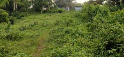 1111 Sq.ft Residential Plot for Sale in Maligaon, Guwahati