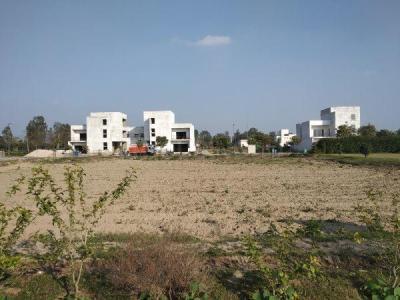 438 Sq.ft Residential Plot for Sale in Sector 35, Sonepat