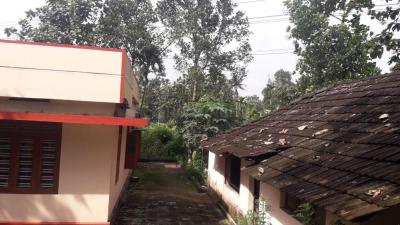 Gallery Cover Image of 1500 Sq.ft 4 BHK Independent House for buy in Perumbavoor for 5500000