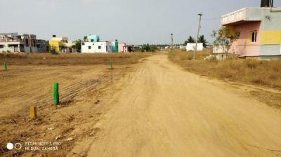 Gallery Cover Image of  Sq.ft Residential Plot for buy in Veppampattu for 1062000