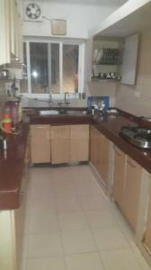 Kitchen Image of D.s PG Homes in Sarita Vihar