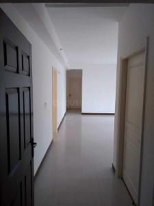 Gallery Cover Image of 1750 Sq.ft 3 BHK Apartment for rent in Sector 75 for 14000