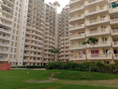 Gallery Cover Image of 1815 Sq.ft 4 BHK Apartment for rent in Royal Heritage, Sector 70 for 14000