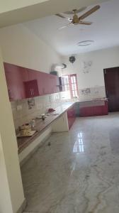 Gallery Cover Image of 3200 Sq.ft 3 BHK Independent House for rent in Gmada Aerocity for 45000