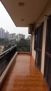 Balcony Image of Star PG in DLF Phase 4
