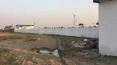 Gallery Cover Image of 110 Sq.ft Residential Plot for buy in Sector 80 for 1100000