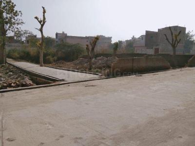 2700 Sq.ft Residential Plot for Sale in Old Delhi, New Delhi