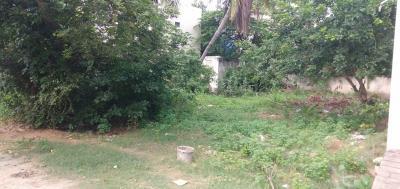 6000 Sq.ft Residential Plot for Sale in Sholinganallur, Chennai