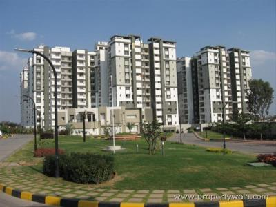 Gallery Cover Image of 1813 Sq.ft 3 BHK Apartment for rent in Sobha Daffodil , HSR Layout for 40000