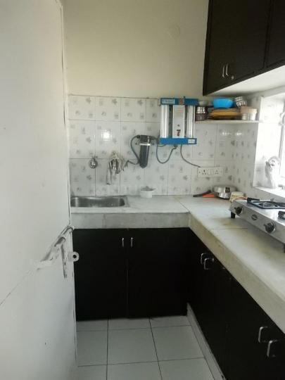 Kitchen Image of PG 4442579 Vasant Kunj in Vasant Kunj