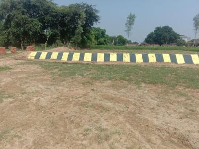 2000 Sq.ft Residential Plot for Sale in Gosainganj, Lucknow