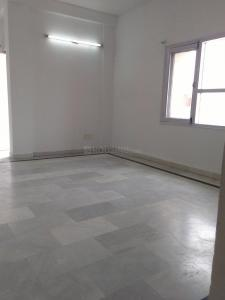 Gallery Cover Image of 870 Sq.ft 2 BHK Apartment for rent in PI Greater Noida for 10000