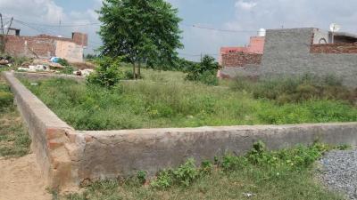 1800 Sq.ft Residential Plot for Sale in Samaypur, Faridabad