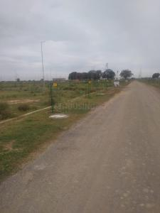 1291 Sq.ft Residential Plot for Sale in Yeida, Greater Noida