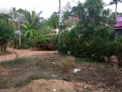 2580 Sq.ft Residential Plot for Sale in Maruthayoor, Pavaratty
