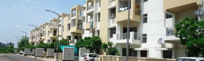 Gallery Cover Image of 2450 Sq.ft 3 BHK Apartment for rent in Sector 81 for 16000