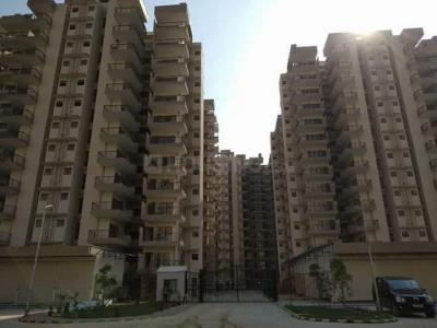 Gallery Cover Image of 1010 Sq.ft 2 BHK Apartment for rent in Sector 82 for 7000