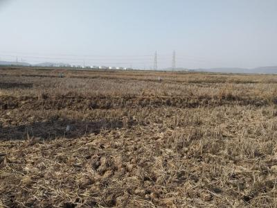 Gallery Cover Image of  Sq.ft Residential Plot for buy in sarde for 200000