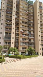 Gallery Cover Image of 656 Sq.ft 1 BHK Apartment for buy in Techman Moti Residency, Raj Nagar Extension for 1950000