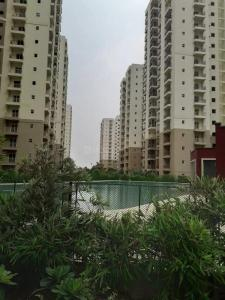 Gallery Cover Image of 1380 Sq.ft 3 BHK Apartment for rent in Paramount Emotions, Phase 2 for 12500